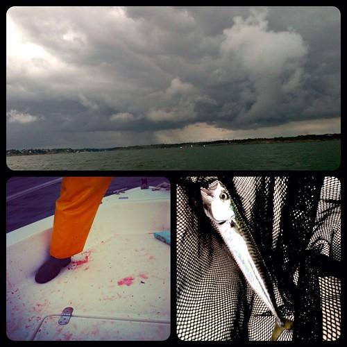 Partie de pêche #10