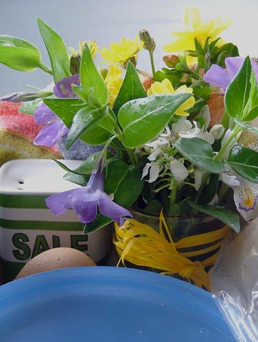 fiori per sofi