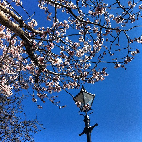 Spring has spring