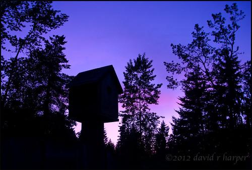 05.18.2012 :: 366/139 by Echo9er