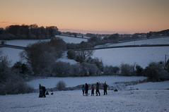 sledging in the sheep field