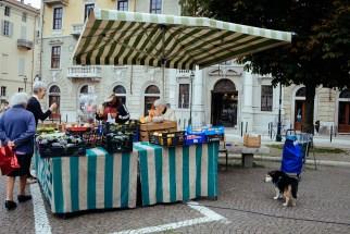 Torino: Piazza Carlo Emanuele II
