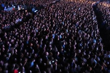 KOL audience