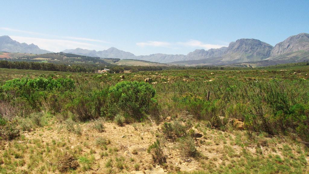 Outside Stellenbosch
