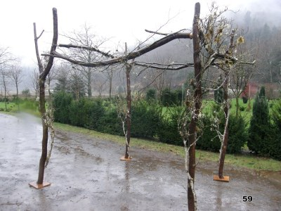 vine maple organic chuppa wedding arch