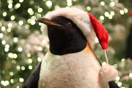 ballagio christmas garden 2011 peguin