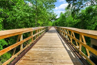 Palmetto Trail Trestle 2