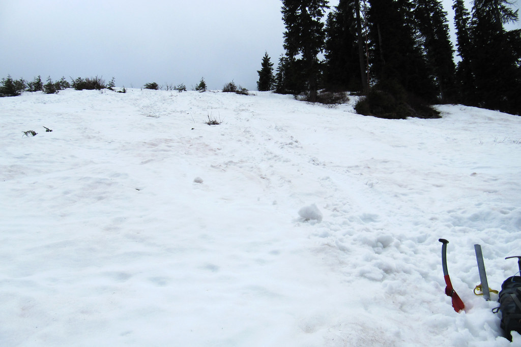 Snow I - Alpental