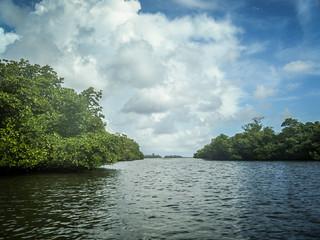 Indian River Paddling-018