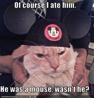 cat ate mouse