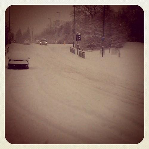 Snow! Hollymoor Way