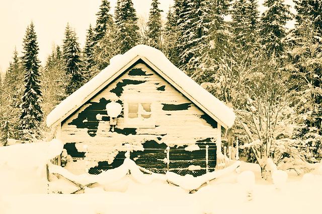Frosty house