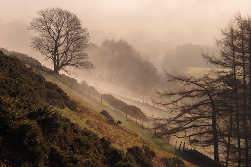 Morning Mist - Scales Fell