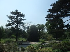 Kew Gardens (21)