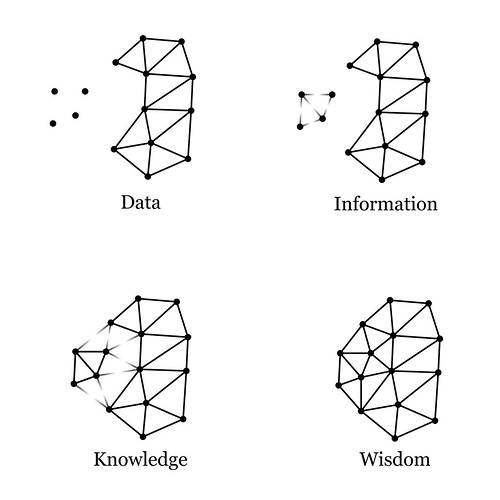 Processed information allows us to have wisdom.