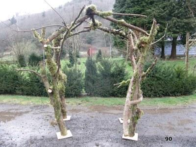 forest arch gazebo style