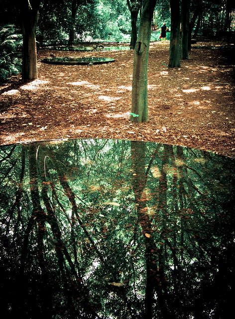 Water/Land