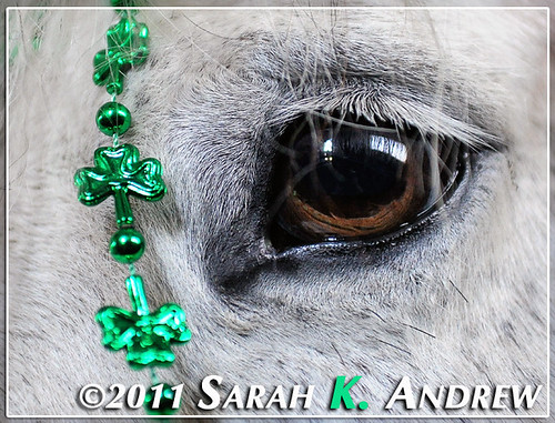 When Irish Eyes are Smiling...
