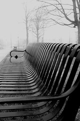 Foggy Benches