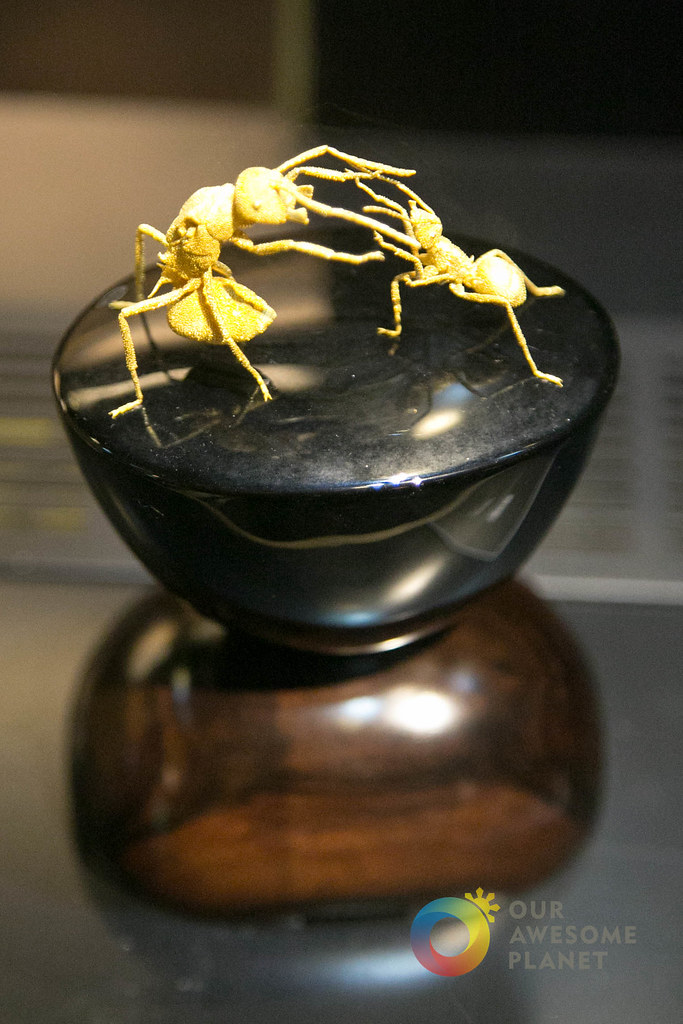 Gold Museum-49.jpg