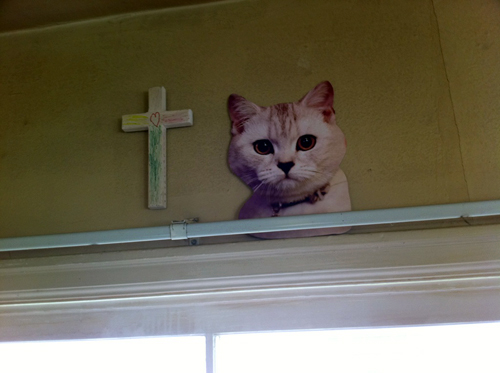 Cat and cross