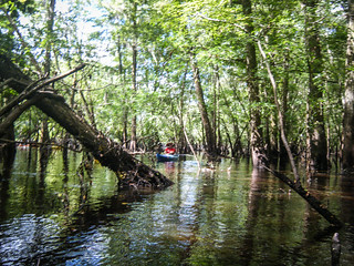 Lowcountry Unfiltered on the Edisto-004