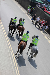 Four horses of the Met police