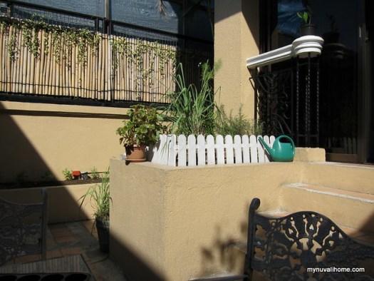 Our QC vegetable garden 19Apr2012 (10)