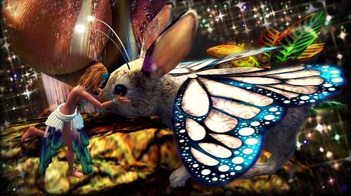 MNDp4.32 Bunnyfly