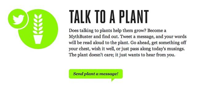Talk To Plant 6