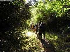 321ª Trilha - Desafiante trilha com rapel - Santa Maria RS_012