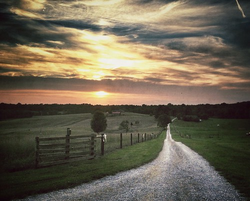 Dirt road at the farm