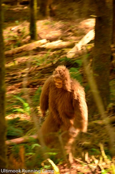 bigfoot on oregon coast