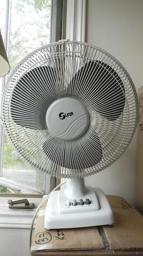 Fan of Summer 2