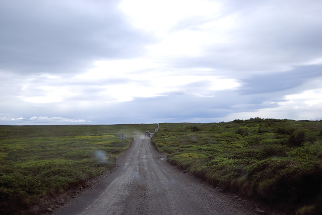 Parque Nacional de Jökulsárgljúfur - Carretera 862 antes de Hljóðaklettar - CC Roser Martínez