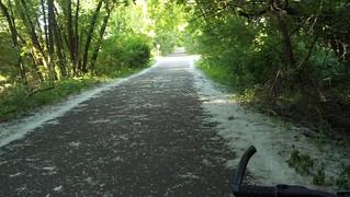 Lilydale Regional Trail