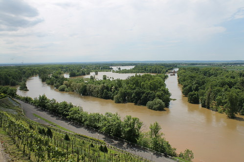 Flooded confluence of the Vraňansko-hořínskí plavební kanál, the Labe and the Vltava, June 5th 2013, from the top of Mělník.