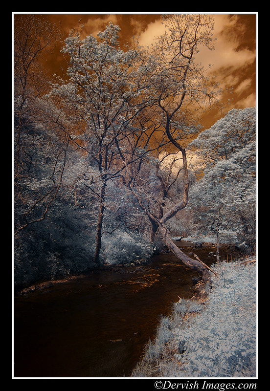 Dovedale  False Colour