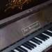 20130505-sam_bailey_forest_piano-034