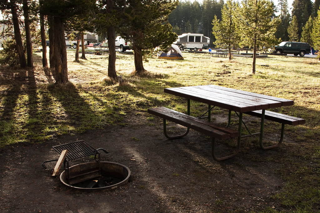 Bridge Bay Campground