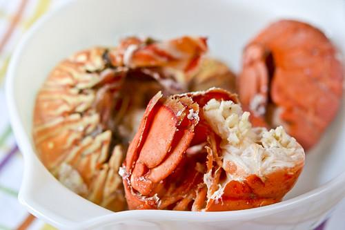 Lobster & Shells 12