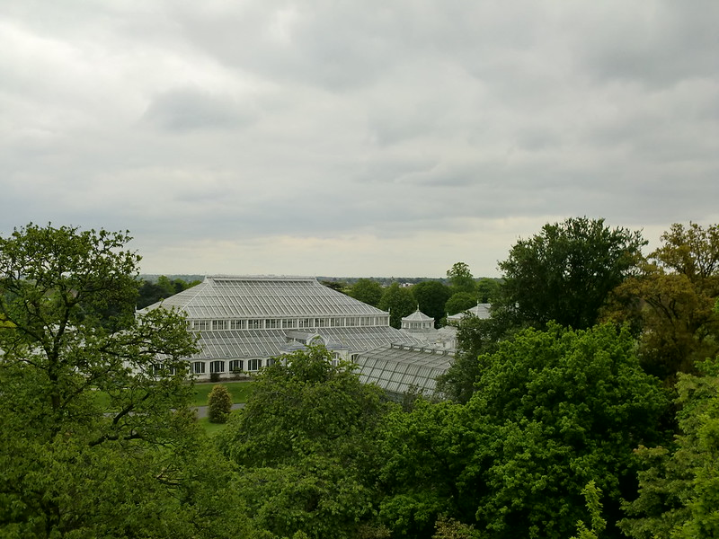 Temperate House