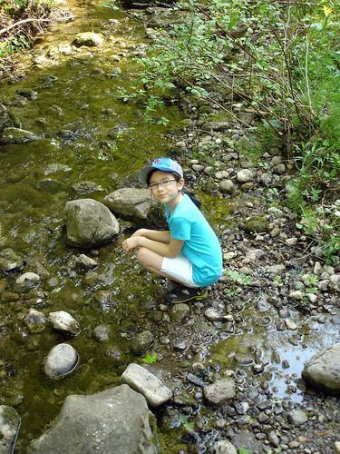 rouge creek