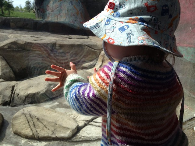 More babyStripes! at the zoo