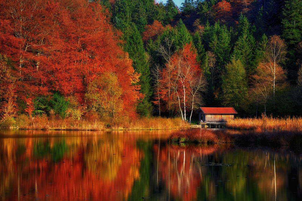 A Place To Rest Autumn Scenery At A Lake In Upper