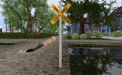 Sim Crossing