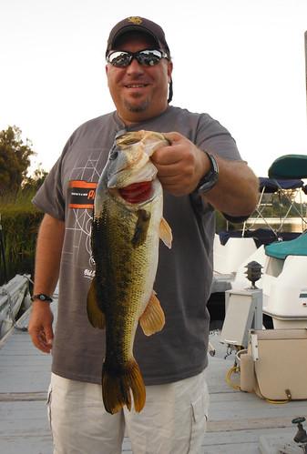 4+ Pound Lake Sherwood Bass