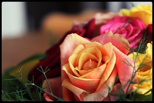 fleurs05