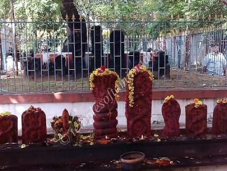 Marundeeswarar Temple, Tiruvanmiyur