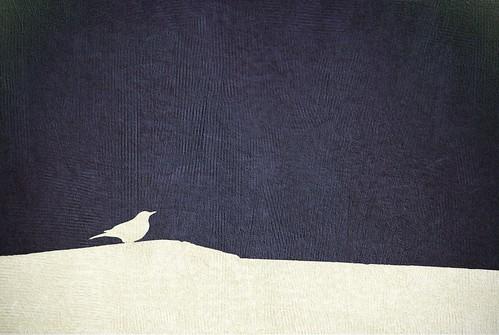 Catbird Silhouette